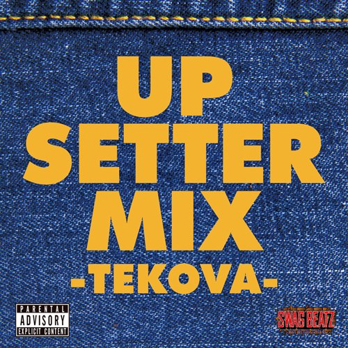 UP SETTER MIX -TEKOVA-<img class='new_mark_img2' src='https://img.shop-pro.jp/img/new/icons15.gif' style='border:none;display:inline;margin:0px;padding:0px;width:auto;' />