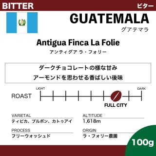【100g】グアテマラ アンティグア ラ・フォリー