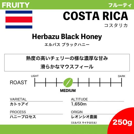 【250g】コスタリカ エルバス ブラックハニー