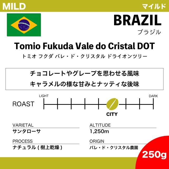【250g】ブラジル トミオ フクダ DOT