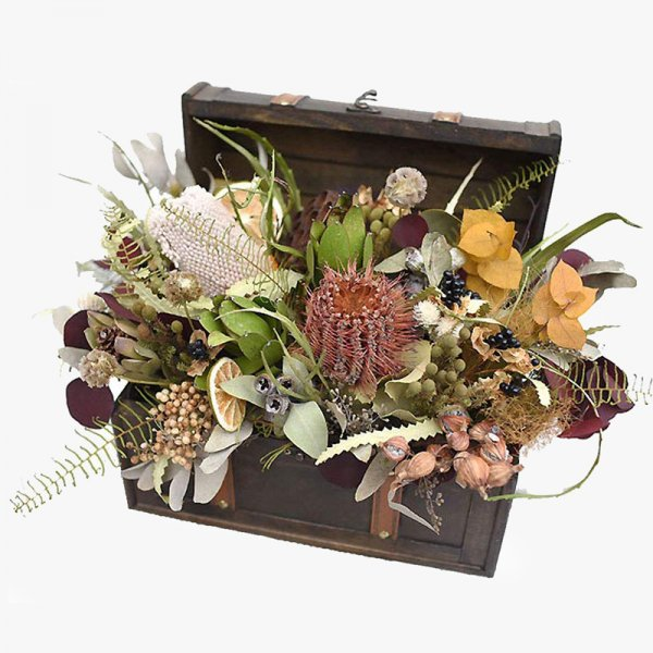 Barba rossa BOX -バルバロッサの箱-
