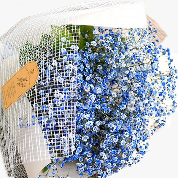 かすみ草 カスミソウ 花束 花 誕生日 結婚祝い お礼  花束  青いかすみ草  青