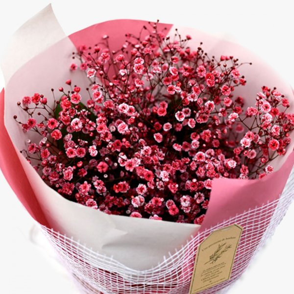 Bouquet of cherry breath