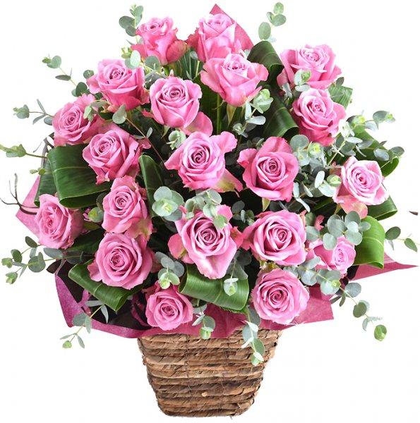 la belle rose -ラ・ベル・ローズ -