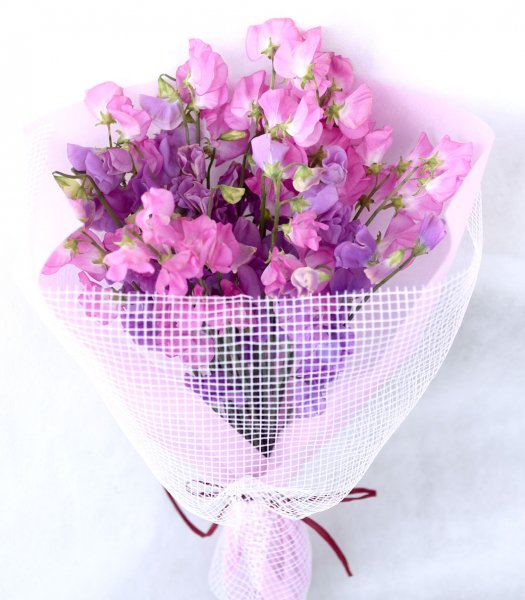 Bouquet of sweet pea