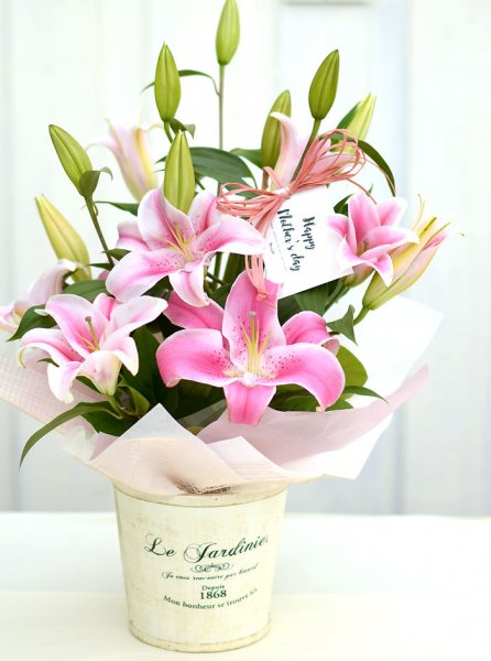 Pink lily arrangement-Mothers day card-