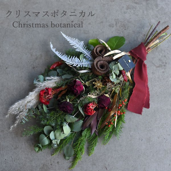 Botanical swag -Christmas -