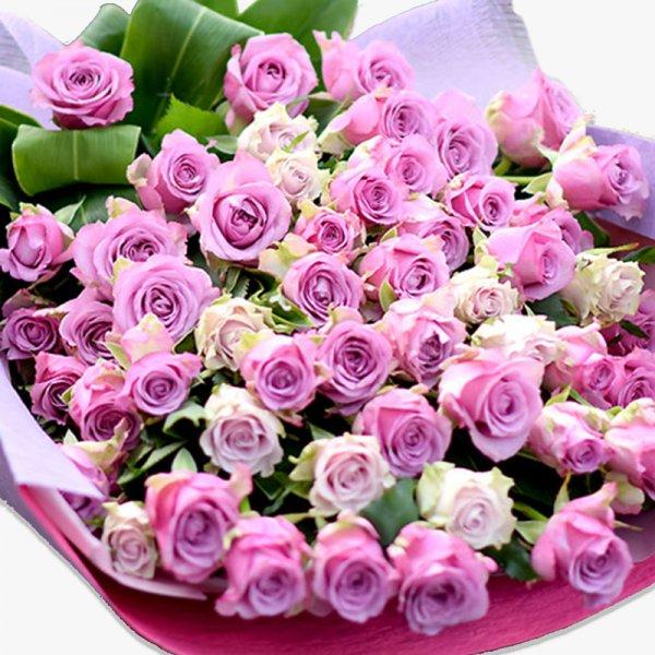 紫のバラ70本の花束 古希や米寿 特別な誕生日に 高貴なパープルローズ