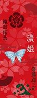 武家ようかん -2代目パッケージ- 一夢庵25周年記念 濃姫1 小倉味