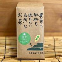高級深蒸し煎茶「初芽」500g