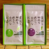 10.和み深蒸し茶セット「初芽・八十八夜」
