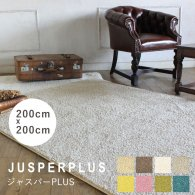 ラグ プレーベル ジャスパーPLUS jusperplus-200x200 リプロ