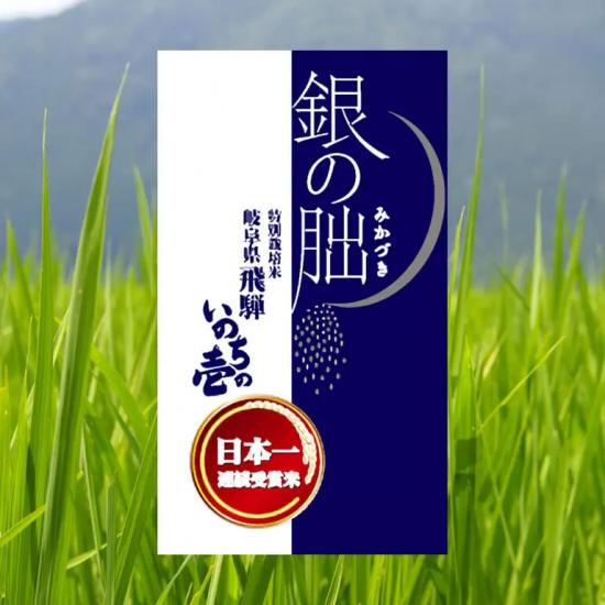 特別栽培米 岐阜県産 銀の朏(いのちの壱)
