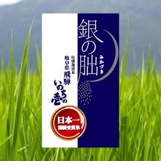 特別栽培米 岐阜県産 銀の朏(いのちの壱)5�