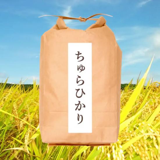 石垣島産ちゅらひかり5�