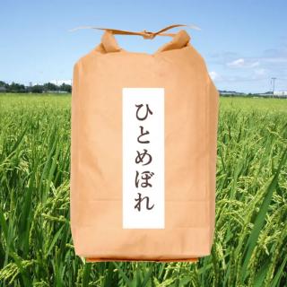 減農薬栽培 完熟米 山形県庄内産 ひとめぼれ5�