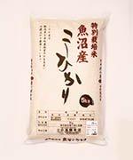 特別栽培米 新潟県十日町産 魚沼コシヒカリ