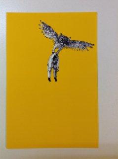 山根 旭 ポストカード 『鳥に注意』