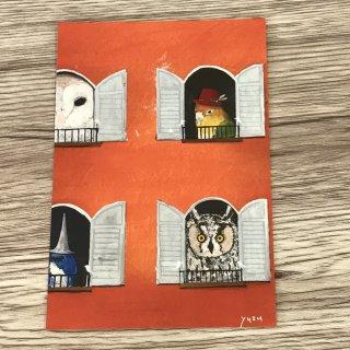 SocksOwl 窓から鳥たち ポストカード