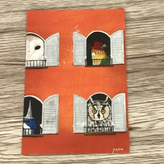 SocksOwl ポストカード 窓から鳥たち