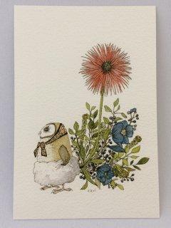 SocksOwl 「お尻からお花」