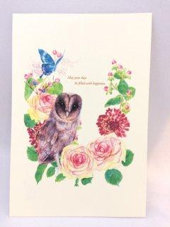 Ake ブラックメンフクロウのポストカード