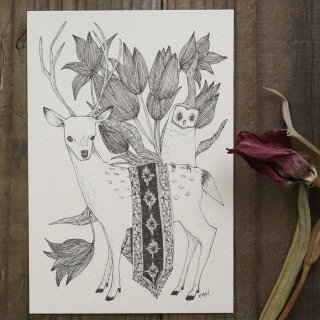 SocksOwl 「鹿とメンフクロウ」