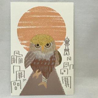 aya yonezawa ポストカード どこへゆく