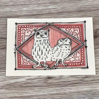 SocksOwl ポストカード  ヨゲンノトリ ウサギフクロウ&キンメフクロウ