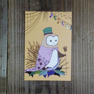 SocksOwl  ポストカード タオル男子�