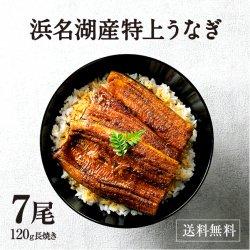 【浜名湖産】特選浜名湖うなぎ蒲焼き7尾【送料無料】