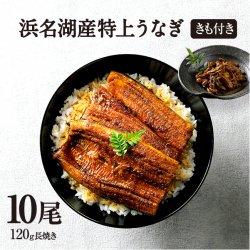 純浜名湖産特上うなぎ10尾・きも焼き(180g)付きセット(12人前)【送料無料】