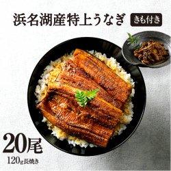 純浜名湖産特上うなぎ20尾・きも焼き(180g)付きセット(24人前)【送料無料】