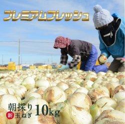 【大特価セール20%OFF♪】【最旬】浜松産新玉ねぎプレミアムフレッシュ無選別品(10kg)【送料無料】