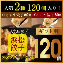 【行列店の浜松餃子】いえやす餃子とげんこつ餃子のスタンダードセット【120個】贈答用