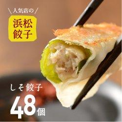 【人気店の浜松餃子】しその香りが美味しい期間限定のヘルシー餃子【48個】ご家庭用