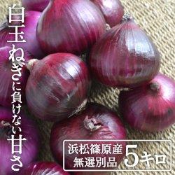 浜松産赤玉ねぎプレミアムレッド無選別品(5kg)【送料無料】