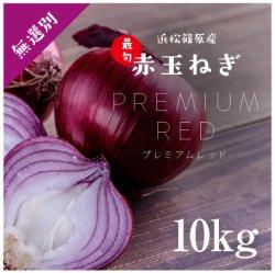 浜松産赤玉ねぎプレミアムレッド無選別品(10kg)【送料無料】