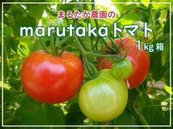 marutakaトマト(1kg)【送料無料】