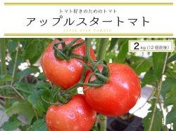 トマト好きのためのトマト『アップルスタートマト』2kg【送料無料】