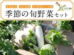 わたなべ農園 季節の旬野菜セット 5〜8種 産地直送【送料無料】