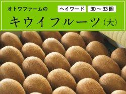 オトワファームのキウイフルーツ(大/33〜34玉)【季節限定】【送料無料】