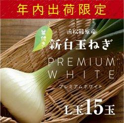 【年内出荷限定商品】浜松産白玉ねぎプレミアムホワイト葉付きA級品(L15玉)【送料無料】