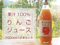アップルジュース 2本セット【送料無料】