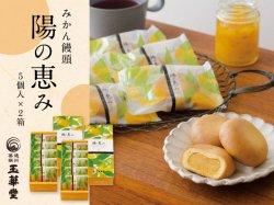 玉華堂のみかん饅頭「陽の恵み」5個入×2箱セット【送料無料】