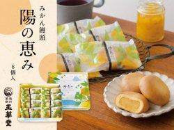 玉華堂のみかん饅頭「陽の恵み」8個入【送料無料】