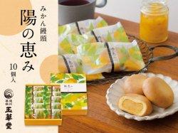 玉華堂のみかん饅頭「陽の恵み」10個入【送料無料】