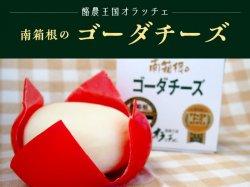 南箱根のゴーダチーズ【送料無料】