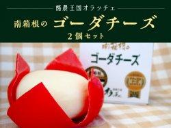 南箱根のゴーダチーズ2個セット【送料無料】