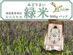 わたなべ農園 幻の古代米『緑米』900gパック【送料無料】